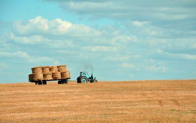 Új mezőgazdasági pályázatot bocsájtottak társadalmi egyeztetésre